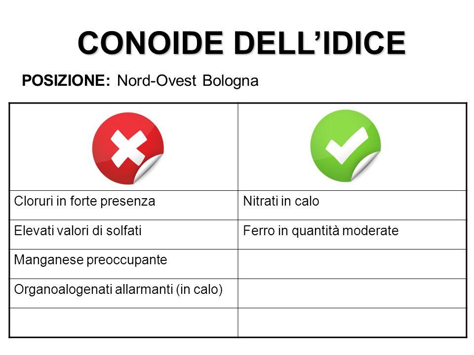 CONOIDE DELL'IDICE POSIZIONE: Nord-Ovest Bologna