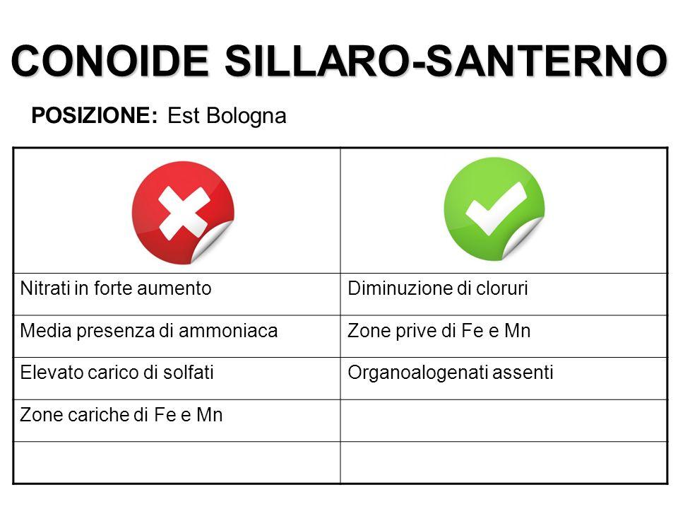 CONOIDE SILLARO-SANTERNO
