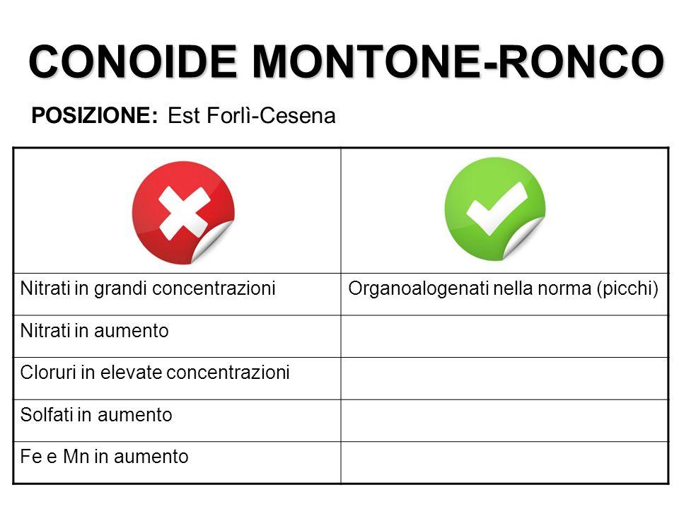 CONOIDE MONTONE-RONCO