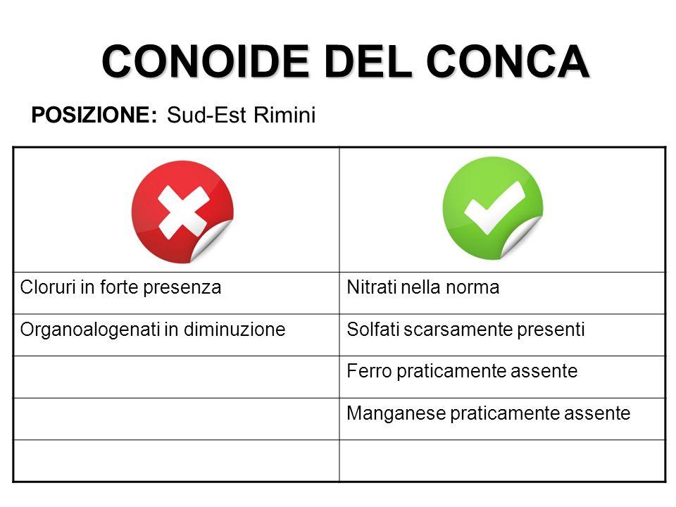 CONOIDE DEL CONCA POSIZIONE: Sud-Est Rimini Cloruri in forte presenza