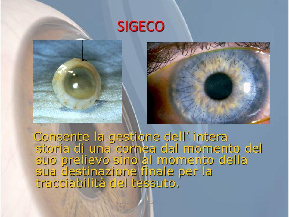 SIGECO