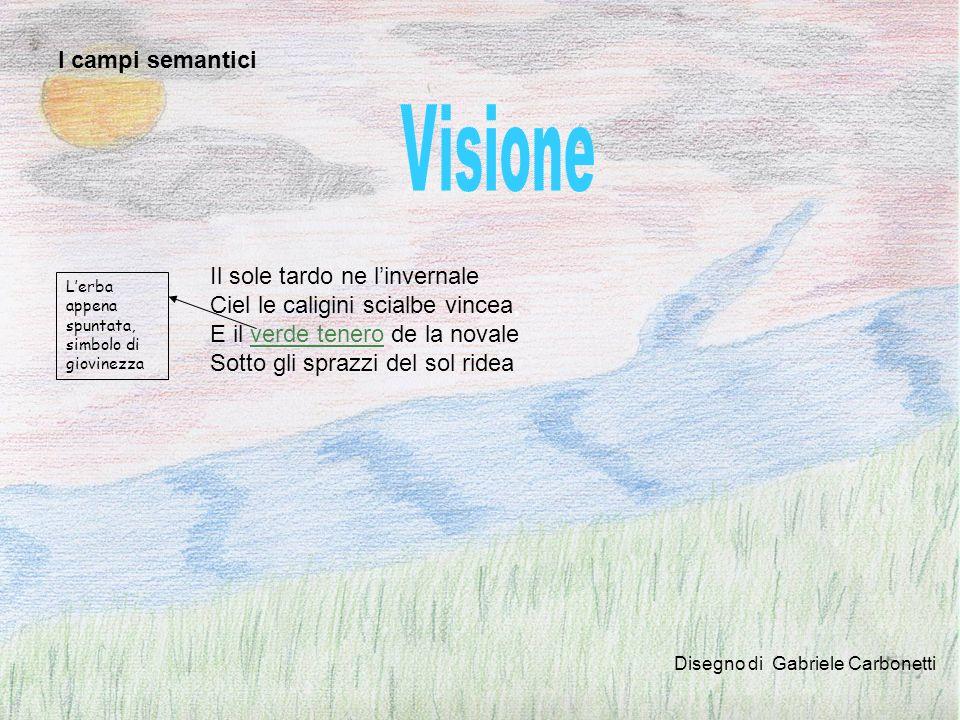 Visione I campi semantici Il sole tardo ne l'invernale