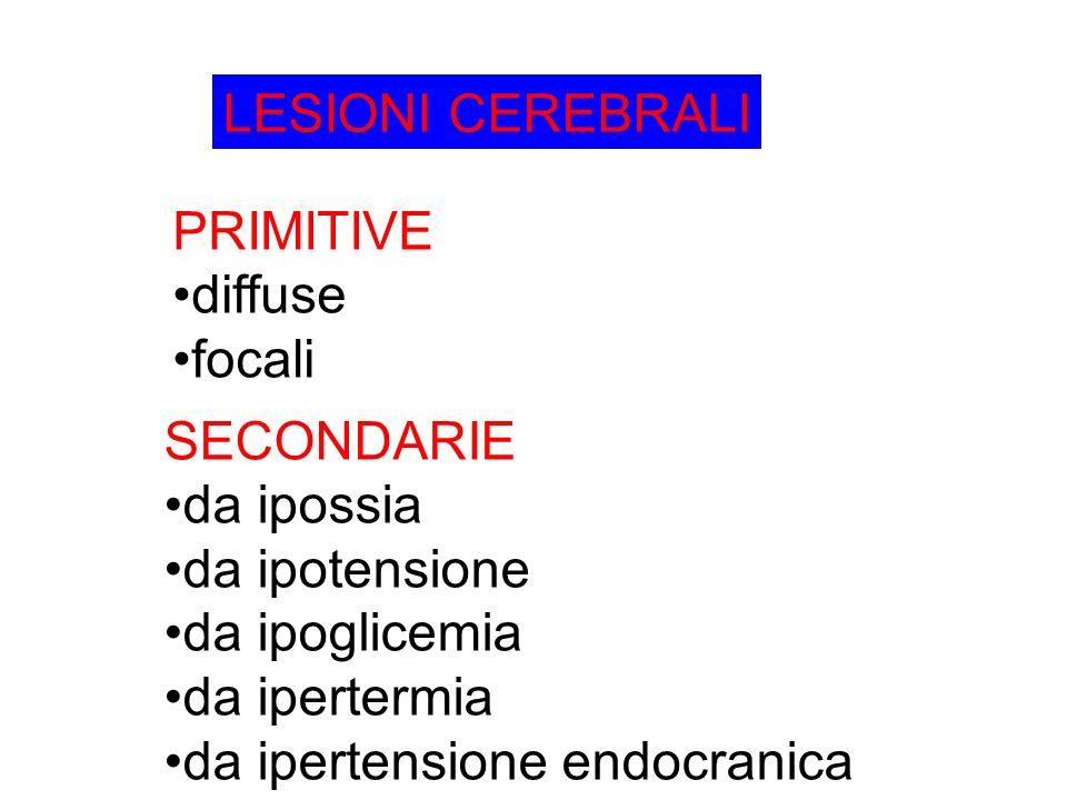 LESIONI CEREBRALI PRIMITIVE. diffuse. focali. SECONDARIE. da ipossia. da ipotensione. da ipoglicemia.
