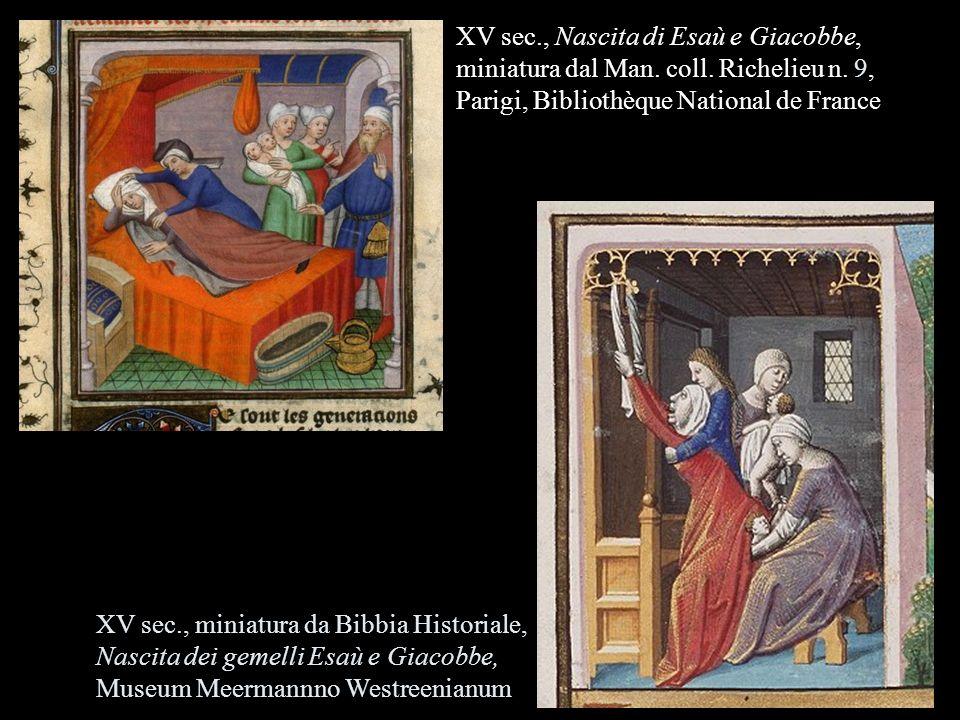 XV sec. , Nascita di Esaù e Giacobbe, miniatura dal Man. coll