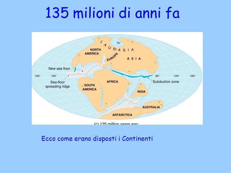 135 milioni di anni fa Ecco come erano disposti i Continenti