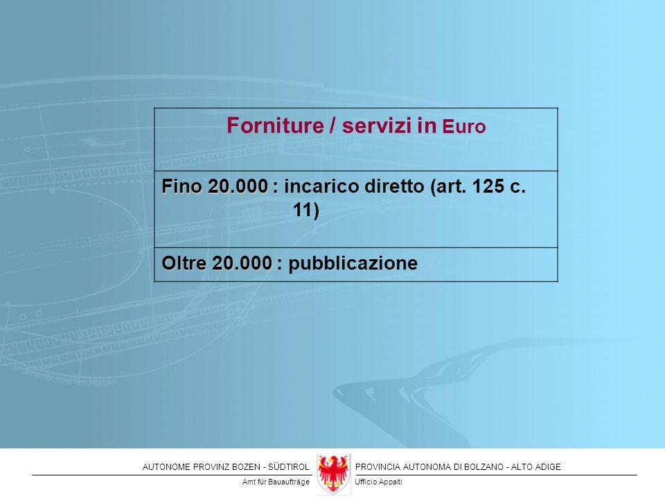 Forniture / servizi in Euro