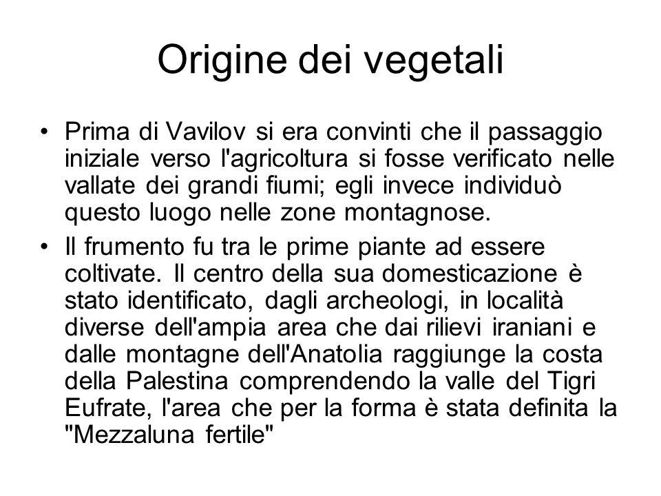 Origine dei vegetali