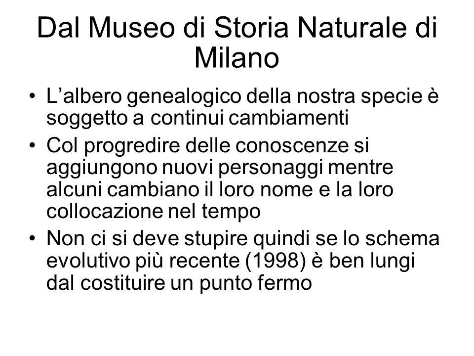 Dal Museo di Storia Naturale di Milano