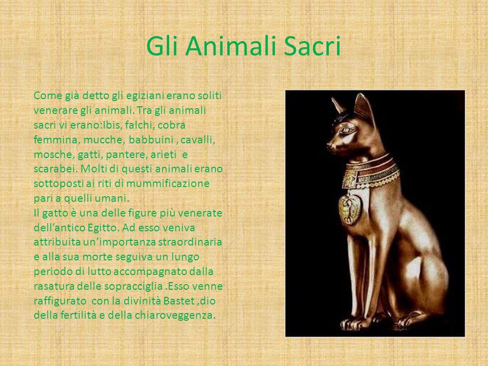 Gli Animali Sacri