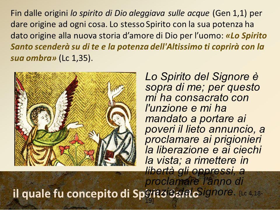 il quale fu concepito di Spirito Santo