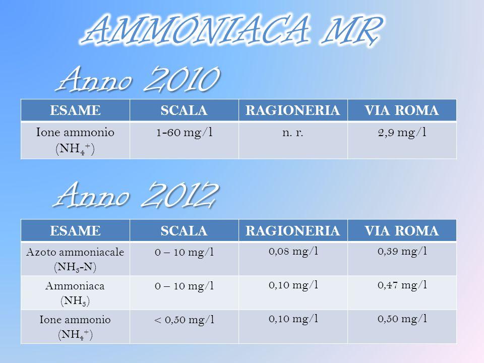AMMONIACA MR Anno 2010 Anno 2012 ESAME SCALA RAGIONERIA VIA ROMA ESAME