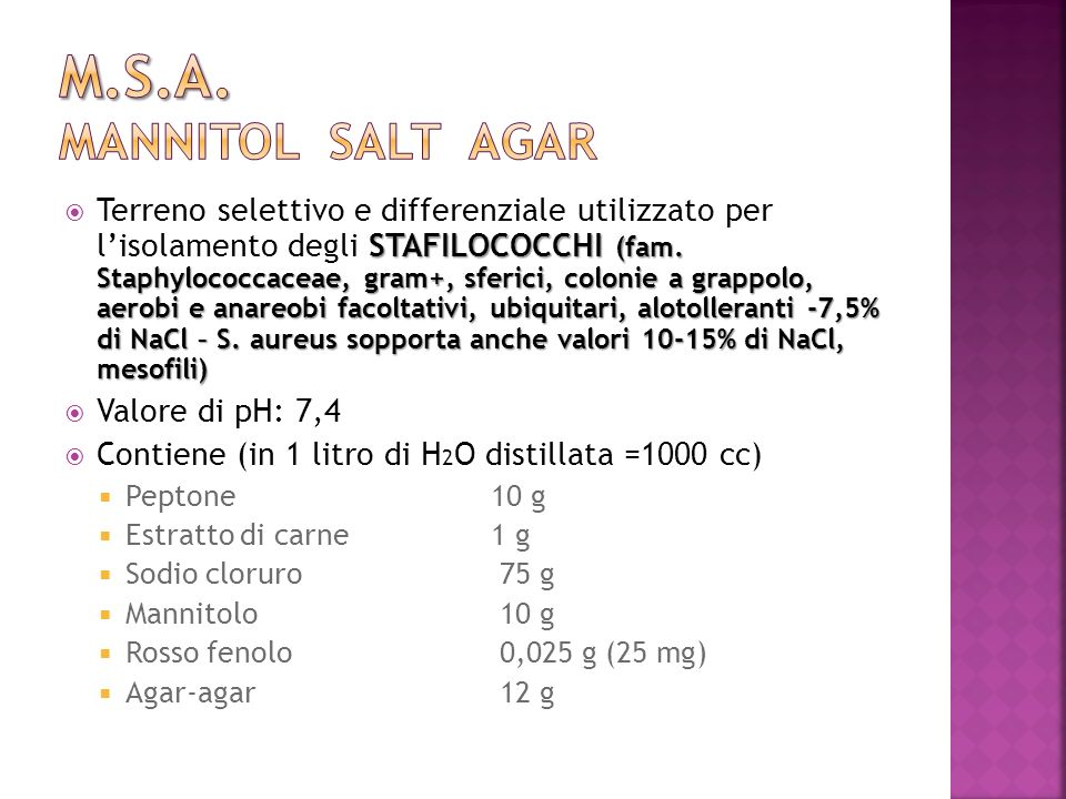 m.s.a. mannitol salt agar