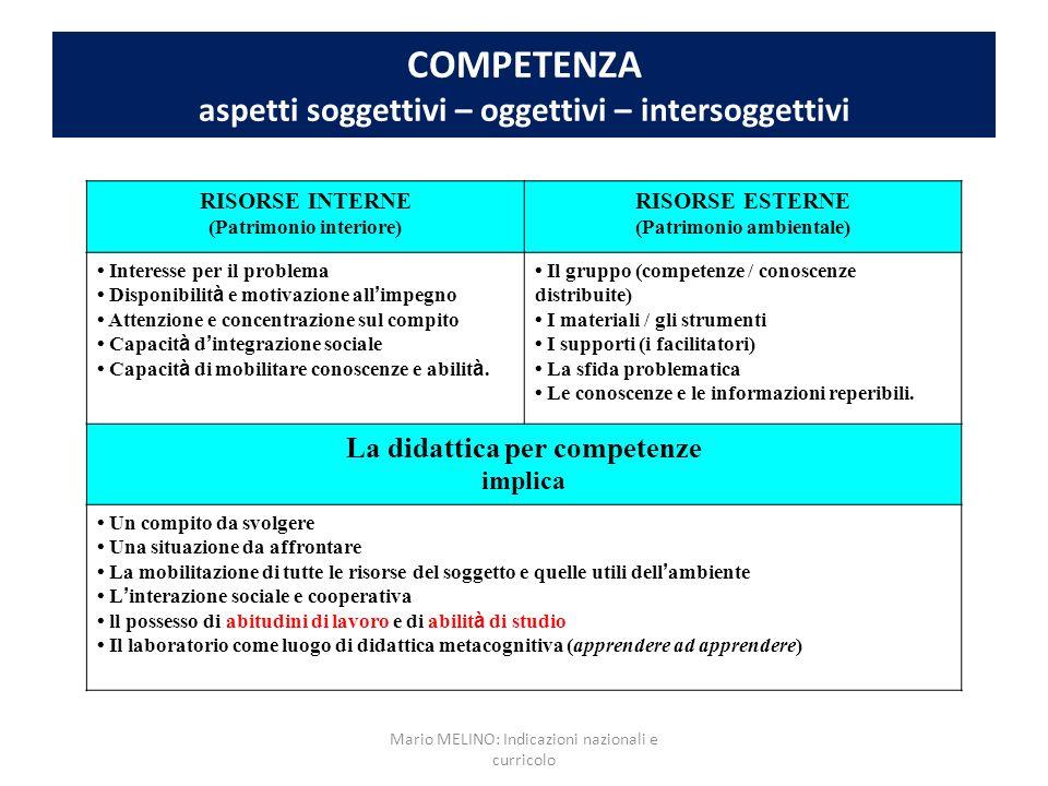 COMPETENZA aspetti soggettivi – oggettivi – intersoggettivi
