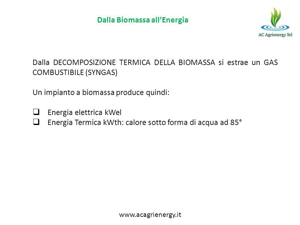 Dalla Biomassa all'Energia