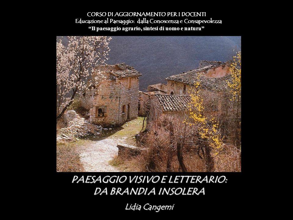 PAESAGGIO VISIVO E LETTERARIO: DA BRANDI A INSOLERA