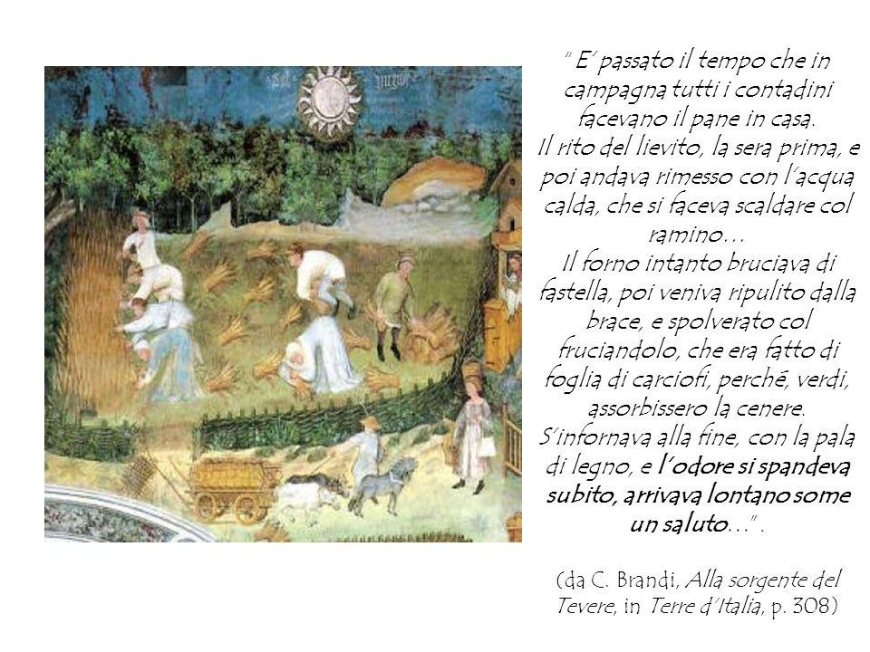 (da C. Brandi, Alla sorgente del Tevere, in Terre d'Italia, p. 308)