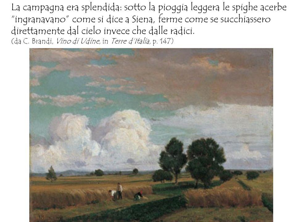 La campagna era splendida: sotto la pioggia leggera le spighe acerbe ingranavano come si dice a Siena, ferme come se succhiassero direttamente dal cielo invece che dalle radici.