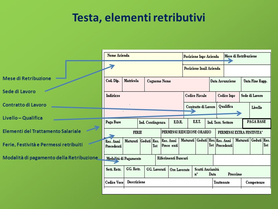 Testa, elementi retributivi