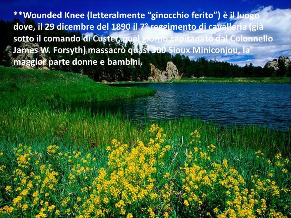**Wounded Knee (letteralmente ginocchio ferito ) è il luogo dove, il 29 dicembre del 1890 il 7° reggimento di cavalleria (già sotto il comando di Custer, quel giorno capitanato dal Colonnello James W. Forsyth) massacrò quasi 300 Sioux Miniconjou, la maggior parte donne e bambini.