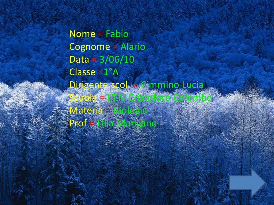 Nome = Fabio Cognome = Alario. Data = 3/06/10. Classe =1°A. Dirigente scol. = Cimmino Lucia. Scuola = I.T.N Cristoforo Colombo.
