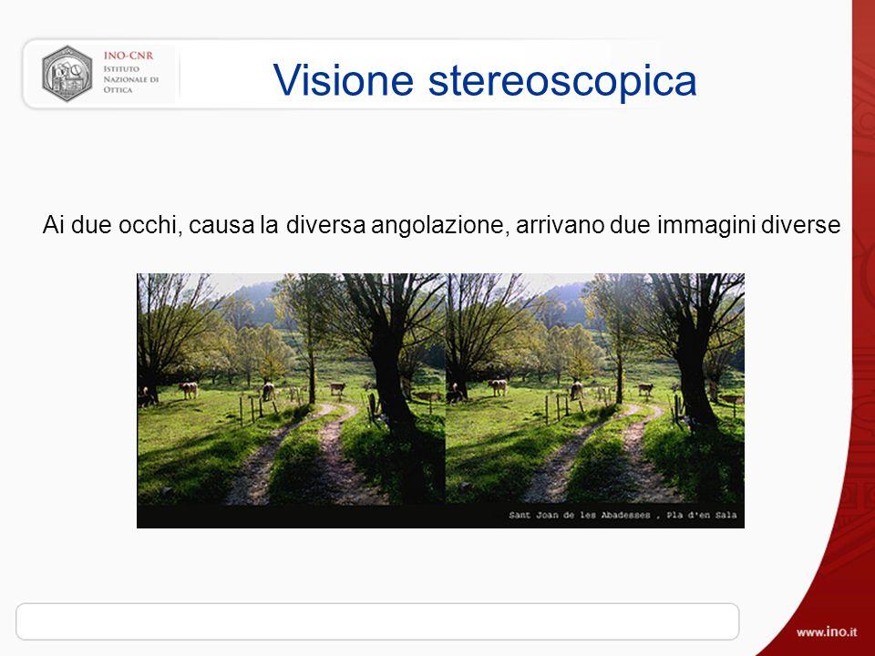 Visione stereoscopica