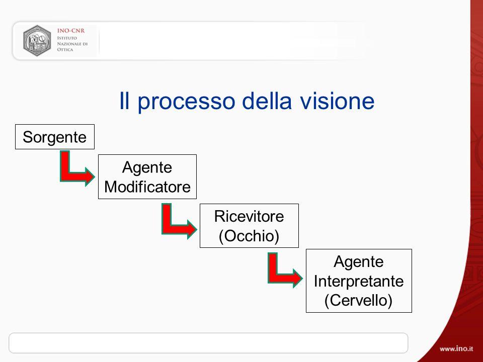 Il processo della visione