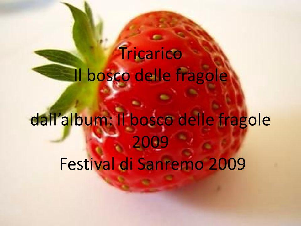 Tricarico Il bosco delle fragole dall'album: Il bosco delle fragole 2009 Festival di Sanremo 2009