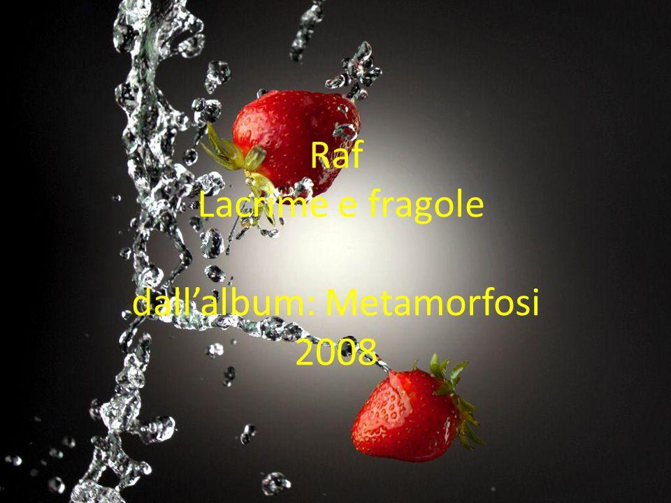 Raf Lacrime e fragole dall'album: Metamorfosi 2008