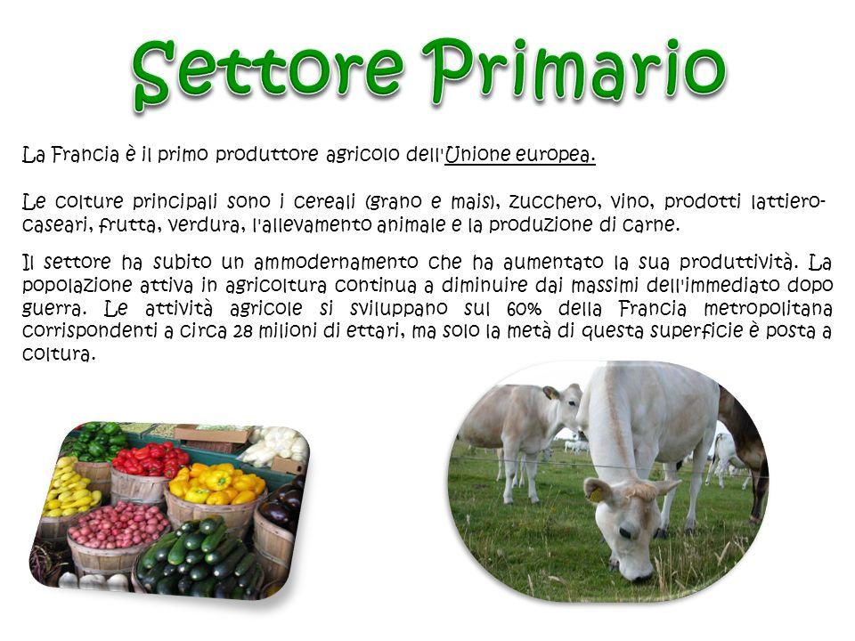 Settore PrimarioLa Francia è il primo produttore agricolo dell Unione europea.