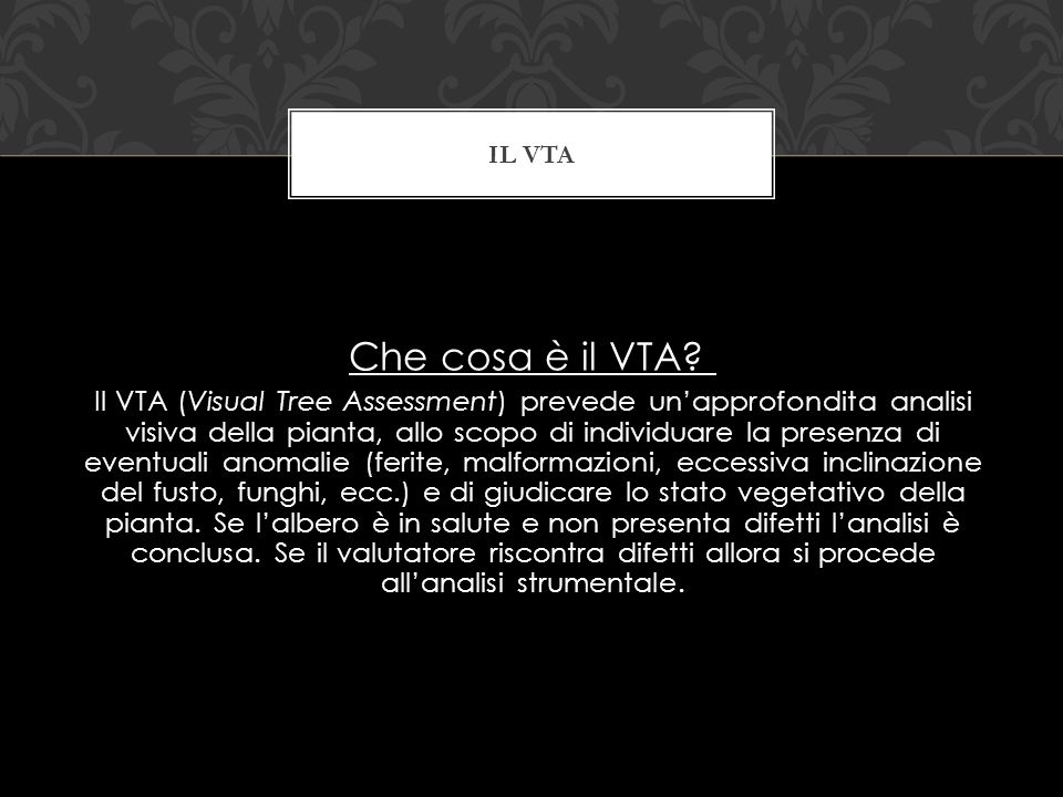 Il vta Che cosa è il VTA