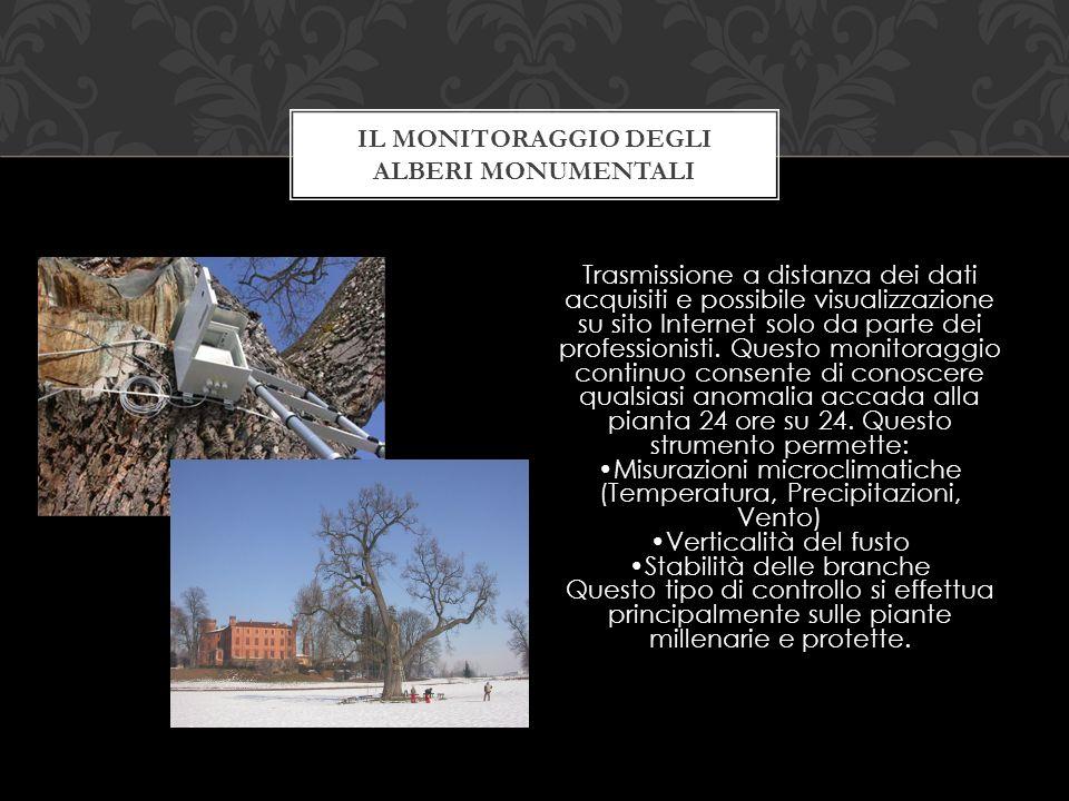 Il monitoraggio degli alberi monumentali