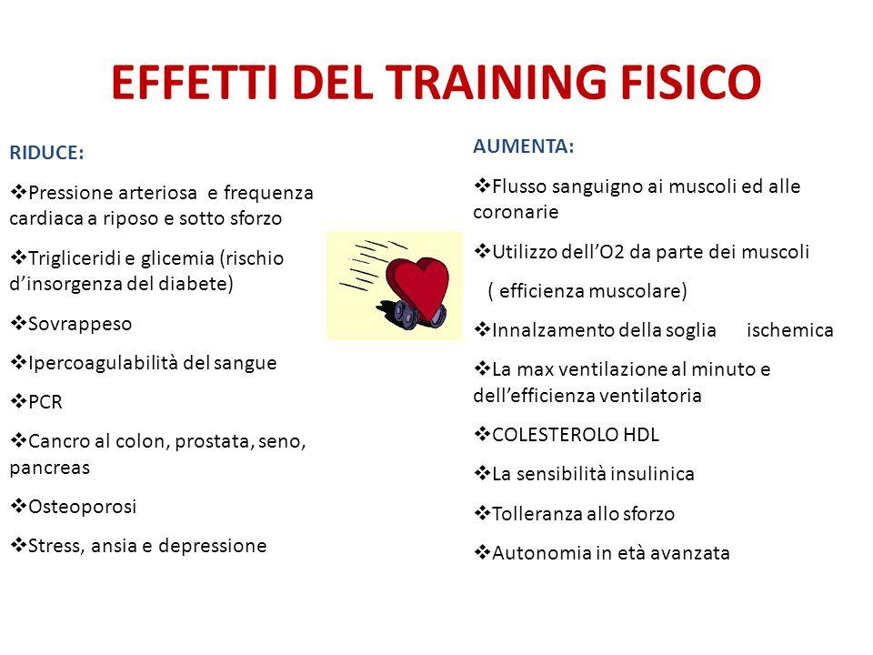 EFFETTI DEL TRAINING FISICO