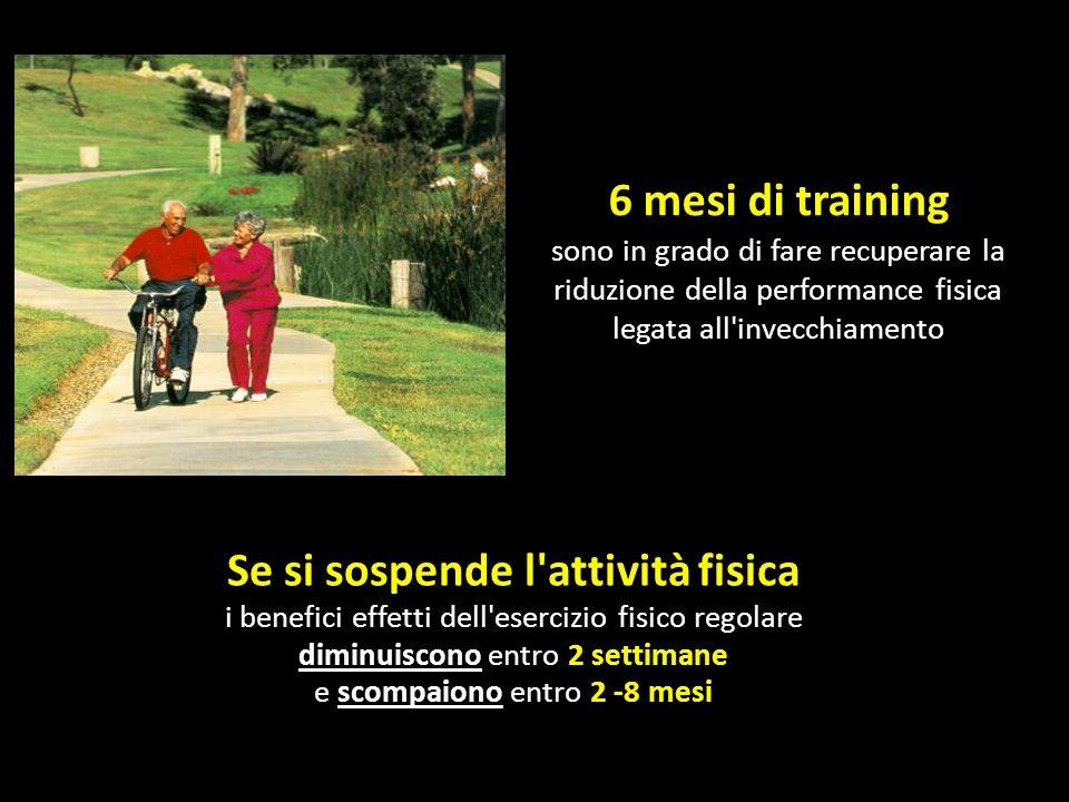 6 mesi di training sono in grado di fare recuperare la riduzione della performance fisica legata all invecchiamento.