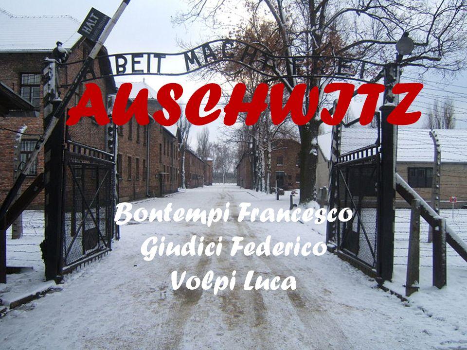 Bontempi Francesco Giudici Federico Volpi Luca