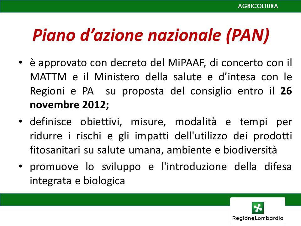 Piano d'azione nazionale (PAN)