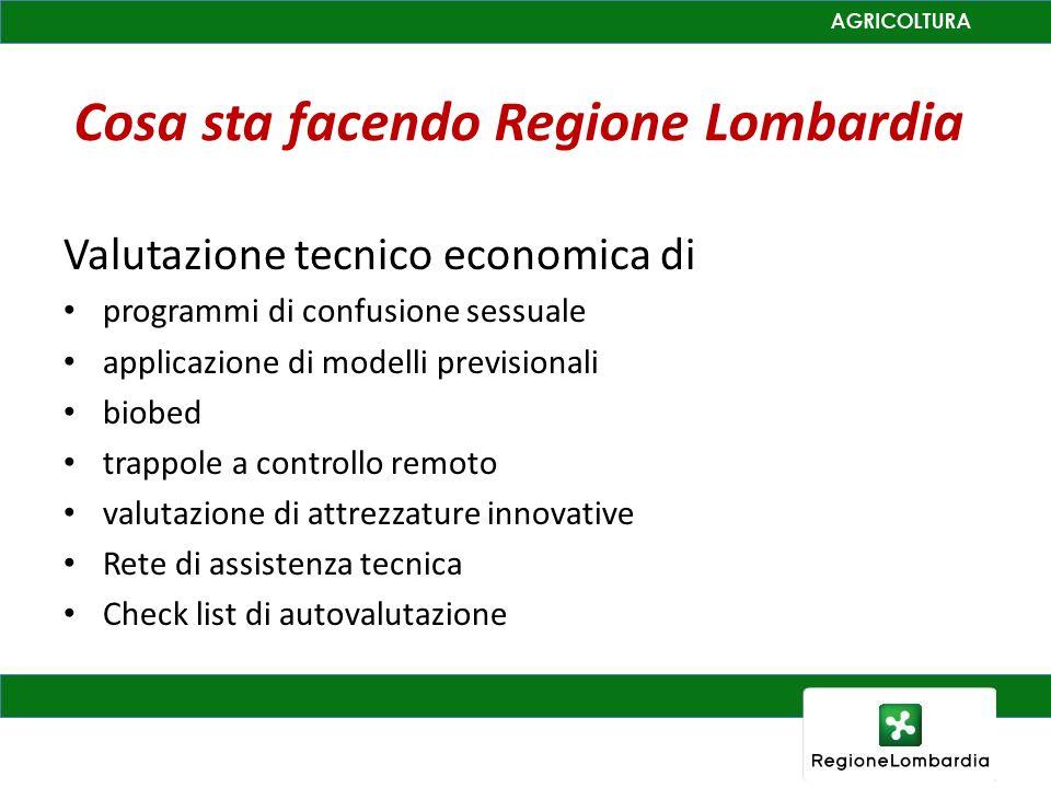 Cosa sta facendo Regione Lombardia