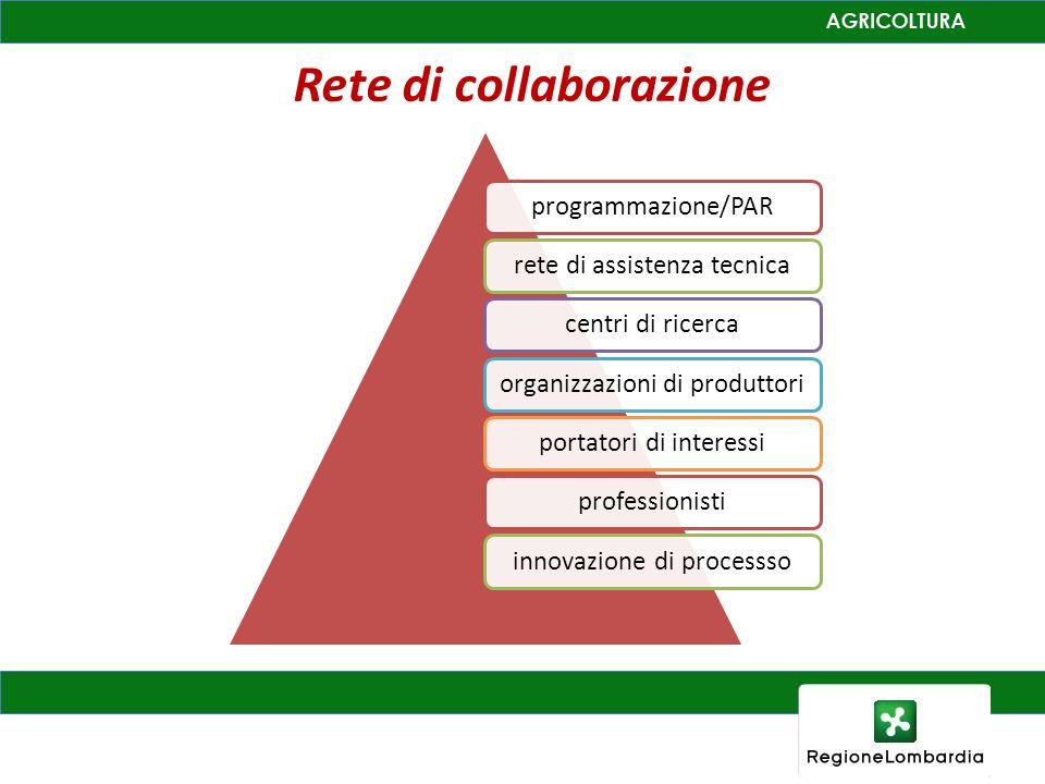 Rete di collaborazione