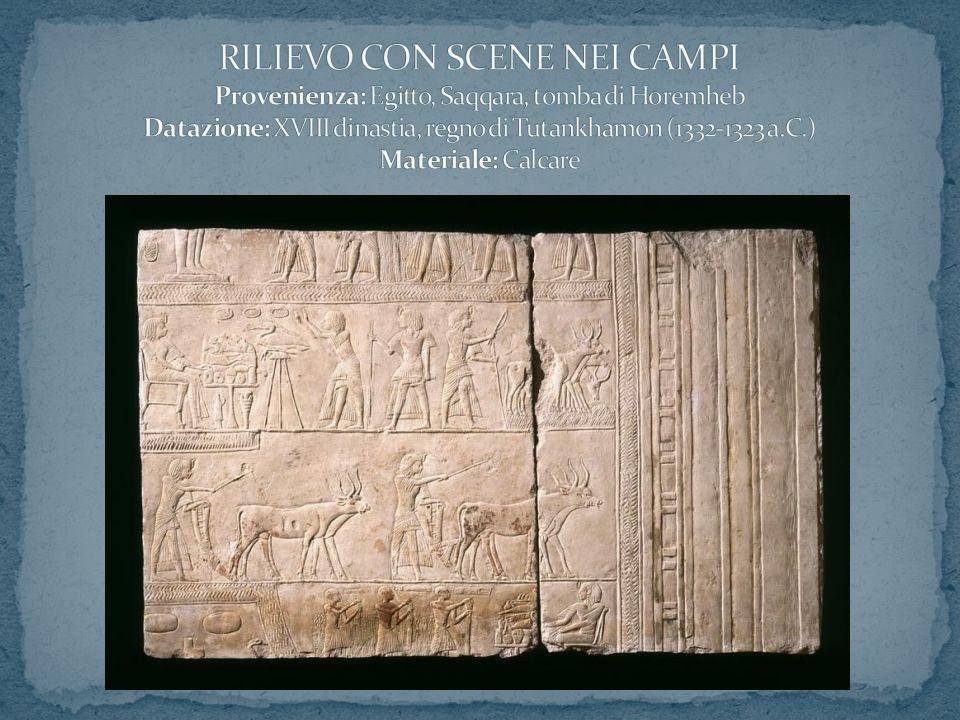 RILIEVO CON SCENE NEI CAMPI Provenienza: Egitto, Saqqara, tomba di Horemheb Datazione: XVIII dinastia, regno di Tutankhamon (1332-1323 a.C.) Materiale: Calcare