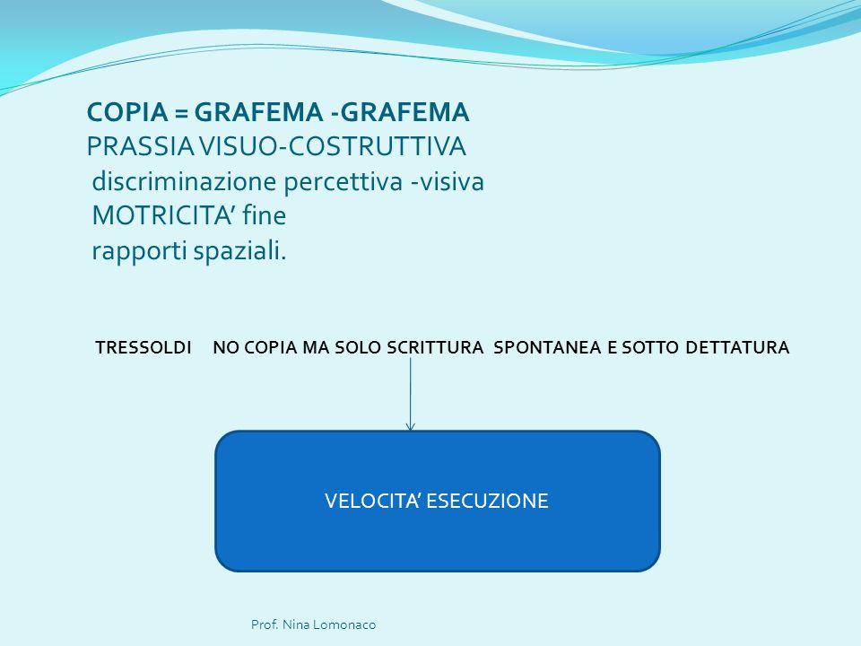 COPIA = GRAFEMA -GRAFEMA PRASSIA VISUO-COSTRUTTIVA discriminazione percettiva -visiva MOTRICITA' fine rapporti spaziali.