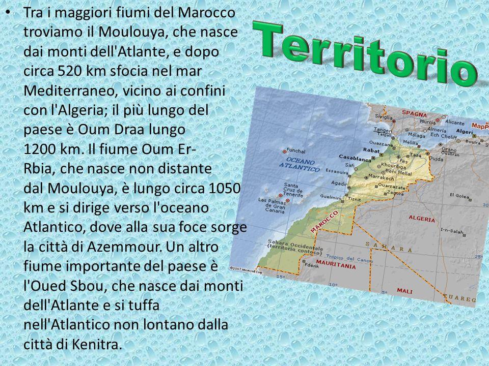 Tra i maggiori fiumi del Marocco troviamo il Moulouya, che nasce dai monti dell Atlante, e dopo circa 520 km sfocia nel mar Mediterraneo, vicino ai confini con l Algeria; il più lungo del paese è Oum Draa lungo 1200 km. Il fiume Oum Er-Rbia, che nasce non distante dal Moulouya, è lungo circa 1050 km e si dirige verso l oceano Atlantico, dove alla sua foce sorge la città di Azemmour. Un altro fiume importante del paese è l Oued Sbou, che nasce dai monti dell Atlante e si tuffa nell Atlantico non lontano dalla città di Kenitra.