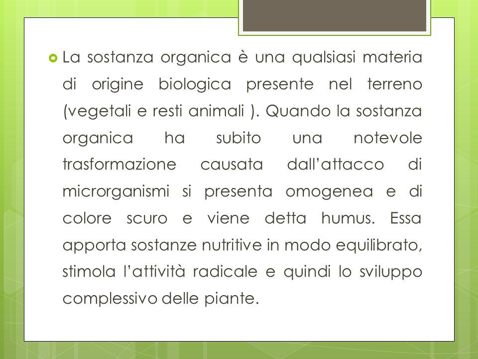 La sostanza organica è una qualsiasi materia di origine biologica presente nel terreno (vegetali e resti animali ).