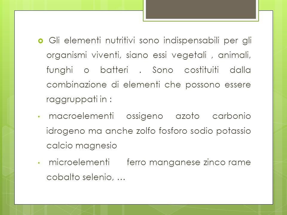 Gli elementi nutritivi sono indispensabili per gli organismi viventi, siano essi vegetali , animali, funghi o batteri . Sono costituiti dalla combinazione di elementi che possono essere raggruppati in :