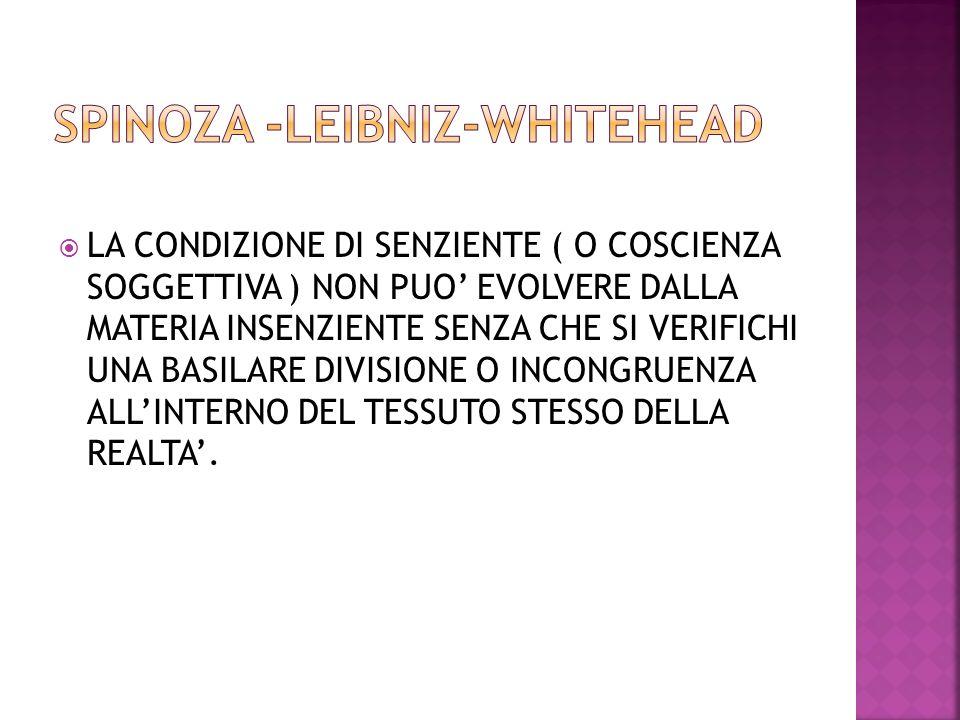 SPINOZA -LEIBNIZ-WHITEHEAD