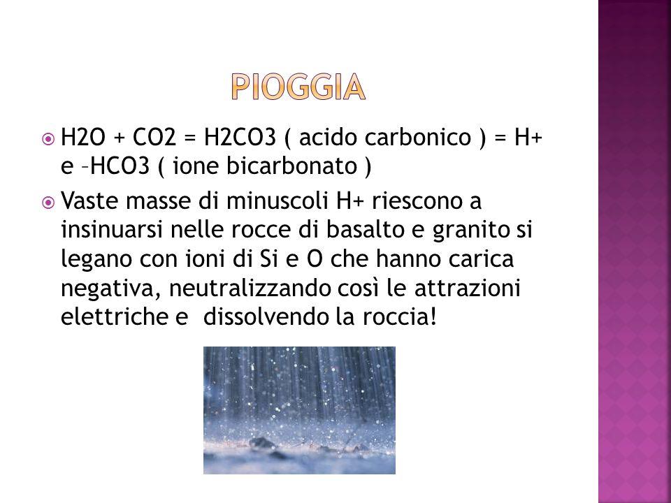 PIOGGIA H2O + CO2 = H2CO3 ( acido carbonico ) = H+ e –HCO3 ( ione bicarbonato )