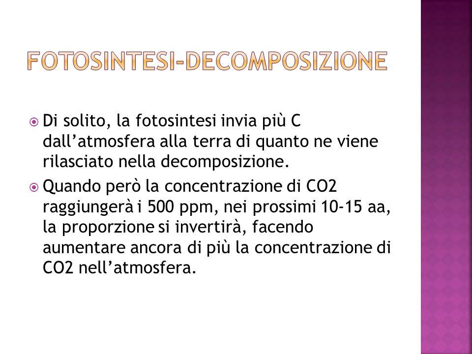 Fotosintesi-decomposizione