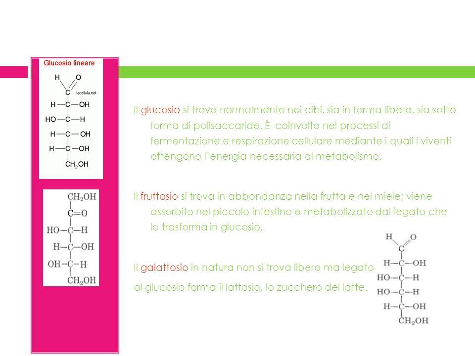 Il glucosio si trova normalmente nei cibi, sia in forma libera, sia sotto forma di polisaccaride.