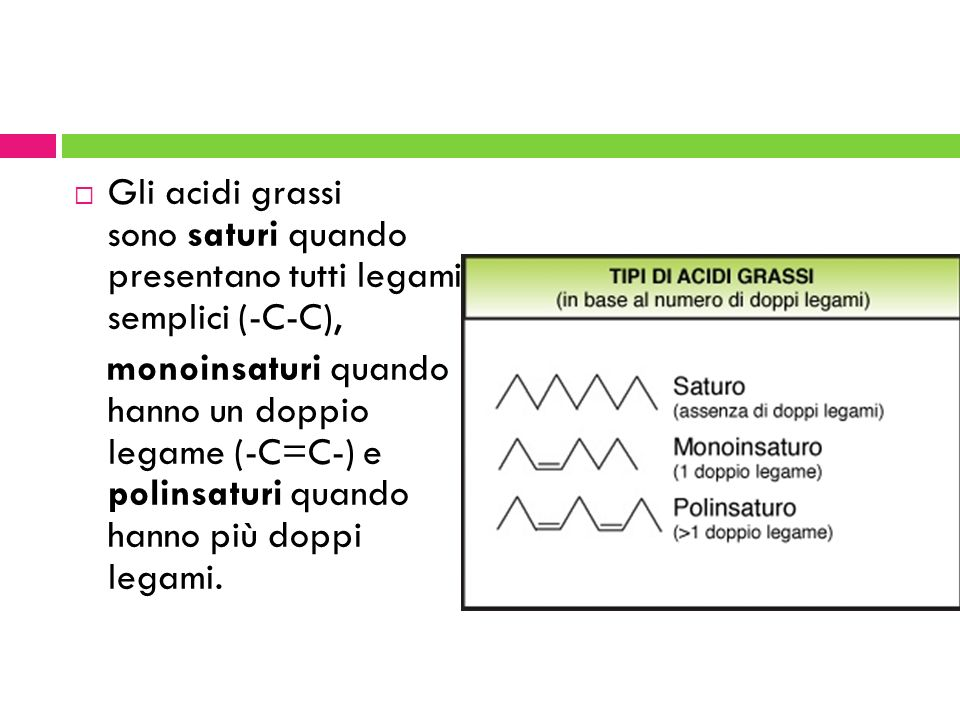 Gli acidi grassi sono saturi quando presentano tutti legami semplici (-C-C),