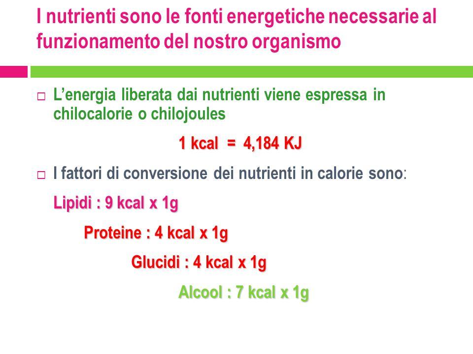 I nutrienti sono le fonti energetiche necessarie al funzionamento del nostro organismo
