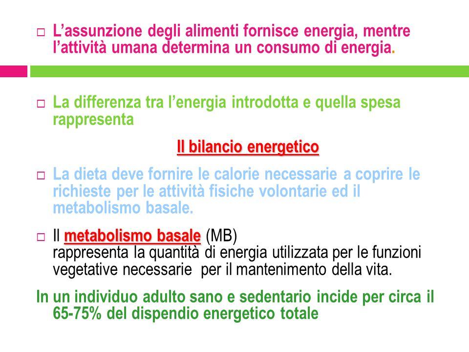 L'assunzione degli alimenti fornisce energia, mentre l'attività umana determina un consumo di energia.