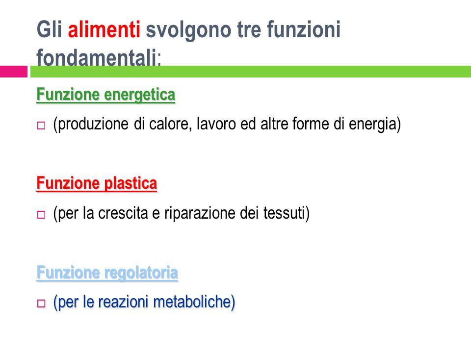 Gli alimenti svolgono tre funzioni fondamentali:
